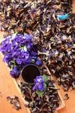 Νερό λουλουδιών Anchan και φρέσκια anchan πορφύρα λουλουδιών Στοκ Εικόνα