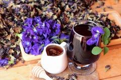 Νερό λουλουδιών Anchan και φρέσκια anchan πορφύρα λουλουδιών Στοκ Εικόνες