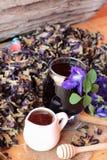 Νερό λουλουδιών Anchan και φρέσκια anchan πορφύρα λουλουδιών Στοκ εικόνες με δικαίωμα ελεύθερης χρήσης