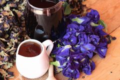 Νερό λουλουδιών Anchan και φρέσκια anchan πορφύρα λουλουδιών Στοκ φωτογραφία με δικαίωμα ελεύθερης χρήσης