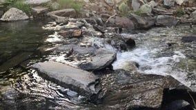 Νερό ποταμού βουνών που ρέει πέρα από τα χαλίκια και τους βράχους απόθεμα βίντεο