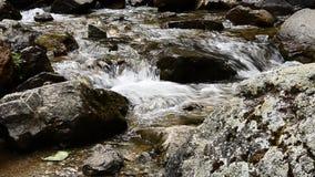 Νερό ποταμού που ρέει κατά μια στενή άποψη με τα χαλίκια φιλμ μικρού μήκους
