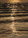 νερό ποταμού Στοκ Εικόνα