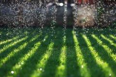 Νερό που αφορά τον πράσινο χορτοτάπητα Στοκ Εικόνες