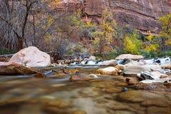 Νερό που διατρέχει του ποταμού της Virgin στο εθνικό πάρκο Zion στις ΗΠΑ στοκ εικόνα