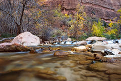 Νερό που διατρέχει του ποταμού της Virgin στο εθνικό πάρκο Zion στις ΗΠΑ στοκ φωτογραφίες