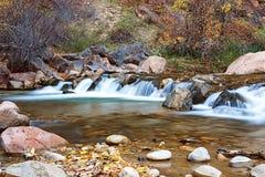 Νερό που διατρέχει του ποταμού της Virgin στο εθνικό πάρκο Zion στις ΗΠΑ στοκ φωτογραφία με δικαίωμα ελεύθερης χρήσης