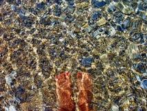 Νερό ποδιών στοκ εικόνα με δικαίωμα ελεύθερης χρήσης