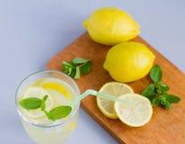 Νερό σε ένα γυαλί με τα φύλλα λεμονιών και oregano, ένα αναζωογονώντας μη αλκοολούχο ποτό για να αποσβήσει τη δίψα σας στη θερμότ στοκ φωτογραφία με δικαίωμα ελεύθερης χρήσης