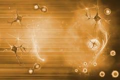 Νευρώνας και κύτταρο Στοκ Φωτογραφίες