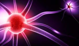 νευρώνας Στοκ φωτογραφία με δικαίωμα ελεύθερης χρήσης