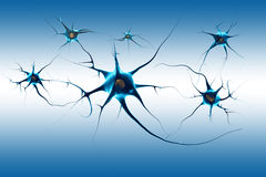 Νευρώνες Στοκ εικόνα με δικαίωμα ελεύθερης χρήσης