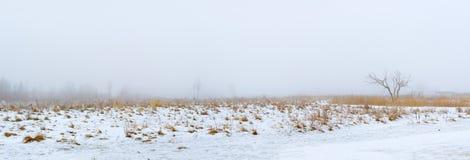Νεφελώδες χειμερινό πρωί ομίχλης χιονώδης χειμώνας τοπίων Στοκ Φωτογραφία