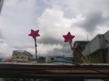 Νεφελώδης φύση με τα λουλούδια στοκ εικόνες