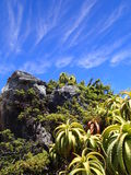 Νεφελώδεις ουρανός και βλάστηση στο επιτραπέζιο βουνό Στοκ Φωτογραφία