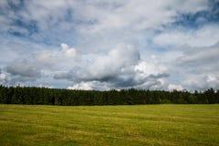 Νεφελώδες θερινό τοπίο Στοκ Εικόνες