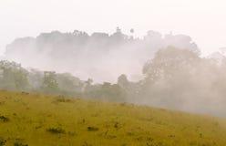 Νεφελώδες πρωί στη δυτική σαβάνα της Αφρικής, Κονγκό Στοκ φωτογραφίες με δικαίωμα ελεύθερης χρήσης