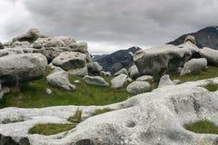 Νεφελώδης ημέρα στο Hill του Castle, Νέα Ζηλανδία Στοκ εικόνες με δικαίωμα ελεύθερης χρήσης