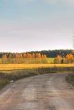 νεφελώδης οδικός ουρανός πεδίων Φθινόπωρο Στοκ Φωτογραφίες