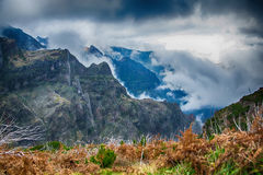 Νεφελώδης υψηλός στα βουνά Στοκ Εικόνες