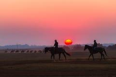 Νεόνυμφοι Jockeys αλόγων αγώνων που εκπαιδεύουν τη Dawn Στοκ Φωτογραφία