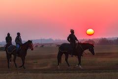 Νεόνυμφοι Jockeys αλόγων αγώνων που εκπαιδεύουν τη Dawn Στοκ Εικόνες