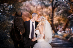 Νεόνυμφος και η νύφη κατά τη διάρκεια του περιπάτου στη ημέρα γάμου τους ενάντια σε ένα μαύρο άλογο στοκ εικόνα
