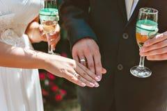 Νεόνυμφος και νύφη από κοινού γάμος δεσμών κοσμήματος κρυστάλλου λαιμοδετών ζευγών Χέρια των newlyweds με τα δαχτυλίδια Στοκ Εικόνες