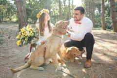 Νεόνυμφος με τη νύφη και το σκυλί Στοκ φωτογραφίες με δικαίωμα ελεύθερης χρήσης