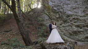 Νεόνυμφος με τη νύφη στο δασικό πάρκο Γαμήλιο ζεύγος Ευτυχής οικογένεια απόθεμα βίντεο
