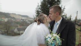 Νεόνυμφος με τη νύφη στο πάρκο Φθινόπωρο Γαμήλιο ζεύγος Ευτυχής οικογένεια απόθεμα βίντεο