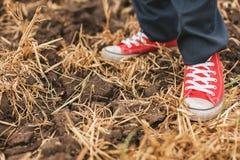 Νεόνυμφος στα βρώμικα κόκκινα plimsolls στο έδαφος Στοκ Φωτογραφίες
