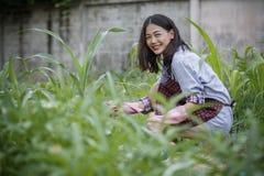 Νεώτερη ασιατική γυναίκα στο σπίτι που καλλιεργεί, hipster τρόπος ζωής ανθρώπων Στοκ Φωτογραφία