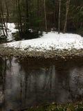 Νησί Βανκούβερ, Βρετανική Κολομβία, Καναδάς στοκ εικόνα με δικαίωμα ελεύθερης χρήσης