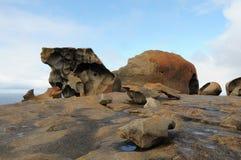 Νησί καγκουρό, Νότια Αυστραλία Στοκ φωτογραφίες με δικαίωμα ελεύθερης χρήσης