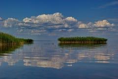 Νησί καλάμων, λίμνη Peipsi (Chudskoe), Εσθονία Στοκ Φωτογραφία