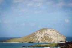 Νησί κουνελιών Στοκ Εικόνα