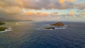 Νησί κουνελιών στοκ εικόνες