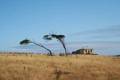νησί Μαρία Στοκ φωτογραφία με δικαίωμα ελεύθερης χρήσης