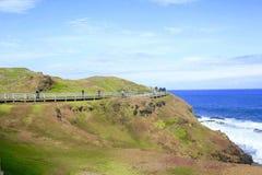 νησί Μελβούρνη Phillip Στοκ φωτογραφία με δικαίωμα ελεύθερης χρήσης