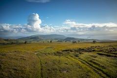 Νησί Πάσχας αγαλμάτων Nui Moai Rapa στοκ εικόνα με δικαίωμα ελεύθερης χρήσης