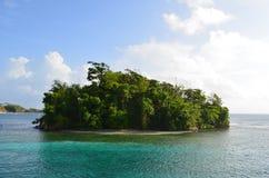 Νησί πιθήκων, Τζαμάικα Στοκ Εικόνες
