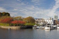 νησί πτώσης granville Στοκ φωτογραφίες με δικαίωμα ελεύθερης χρήσης