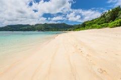 Νησί Σεϋχέλλες Mahe παραλιών Royale Anse Στοκ εικόνα με δικαίωμα ελεύθερης χρήσης