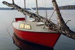 Νησί σημύδων γιοτ Στοκ φωτογραφίες με δικαίωμα ελεύθερης χρήσης