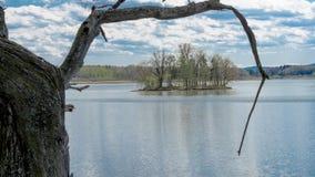 Νησί στη λίμνη από πίσω από την παλαιά βαλανιδιά στοκ εικόνες