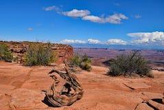 Νησί στον ουρανό Εθνικό πάρκο Canyonlands Utah Στοκ Φωτογραφίες