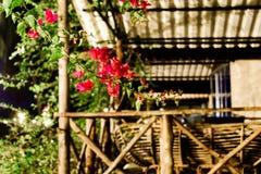 Νησί της Καμπότζης νύχτα το μπανγκαλόου με μια μεγάλη βεράντα στοκ φωτογραφία