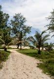 Νησί της Καμπότζης οδική ζούγκλα στοκ εικόνες με δικαίωμα ελεύθερης χρήσης
