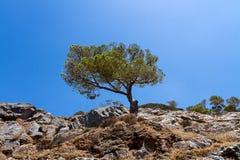 νησί της Κρήτης Στοκ Εικόνα